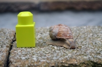 Introducing Mini the monster snail and its best friend Mr. Duplo block